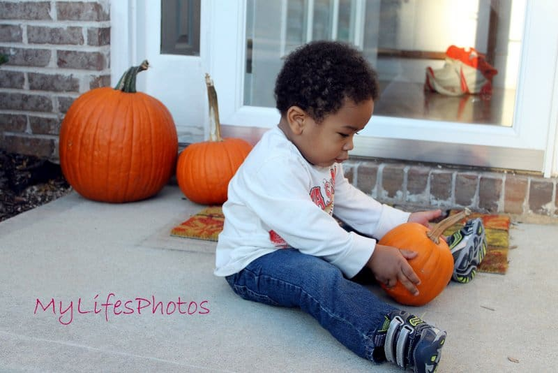 Favorite Photo(s) of the Week: Pookah and the Pumpkin