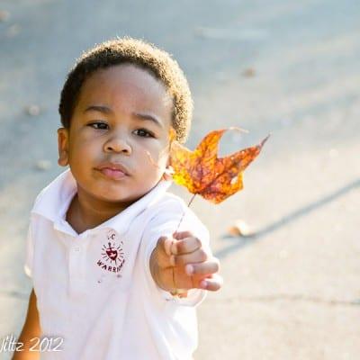 NaBloPoMo Day 9: Nurture Photography:Brown