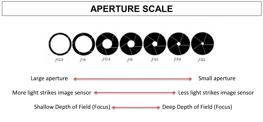 Photography Tips for Aperture and Depth of Field