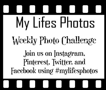 My Life's Photos: A Weekly Photo Challenge!