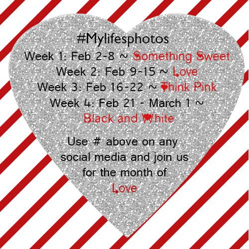mylifesphotos feb