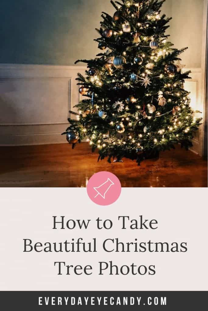 how to take christmas tree photos