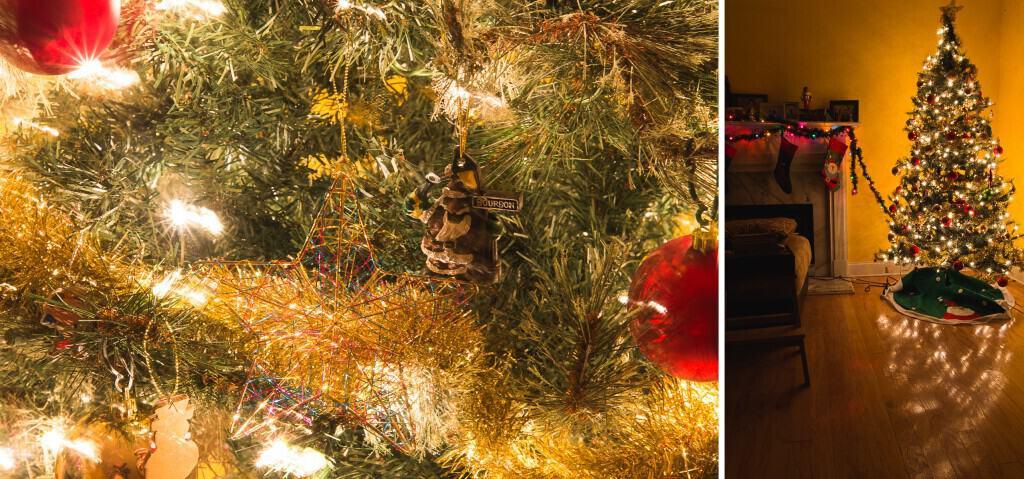 Photography tips on how to take christmas tree photos