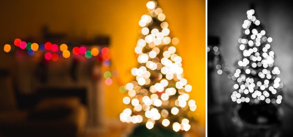christmas tree photos bokeh