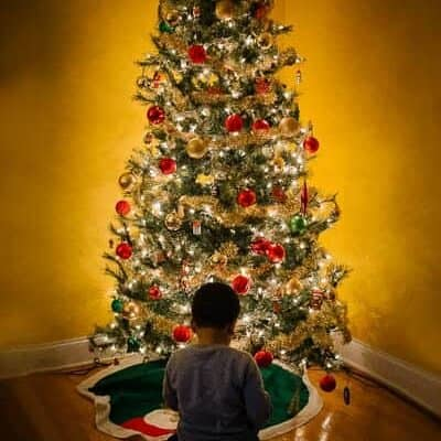 The Lovely Everyday: Oh Christmas Tree…….