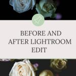 Before and After Lightroom Edit