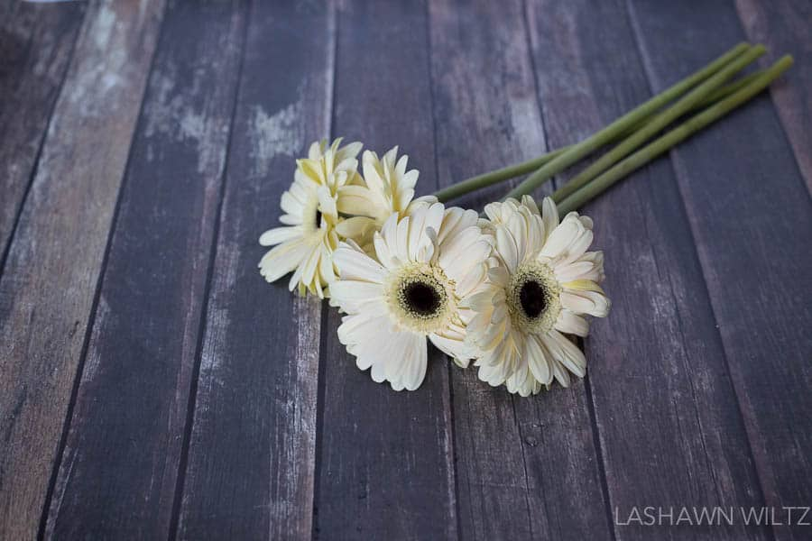 photography tips automatic white balance