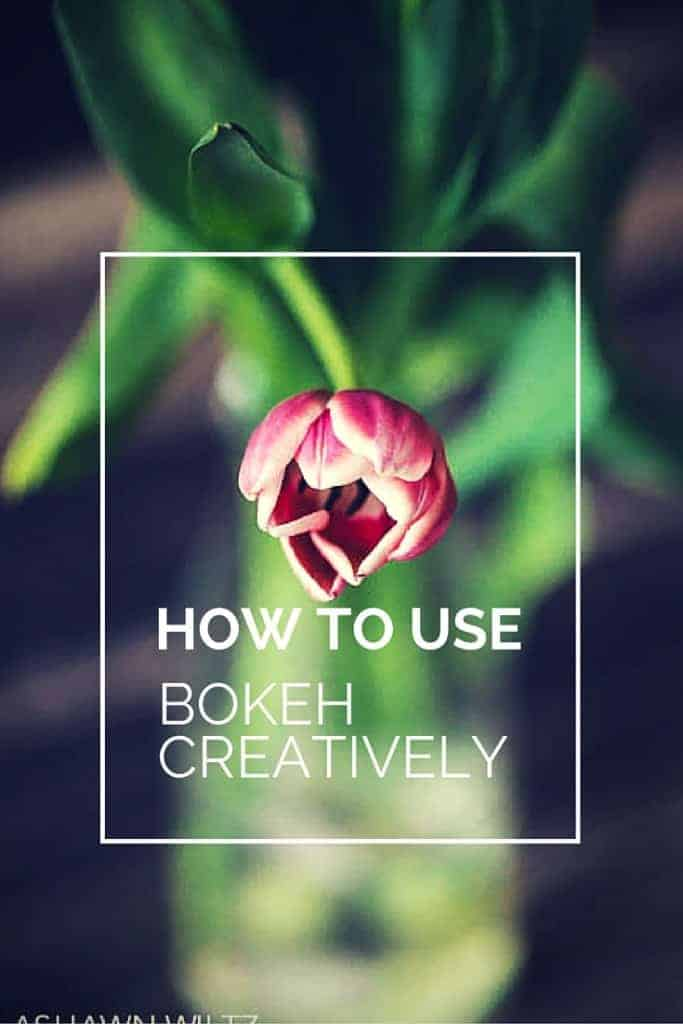 Want those creamy backgrounds in your photos? Here are 3 tips to use bokeh creatively in your photography