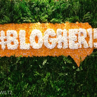 On Speaking at Blogher 15