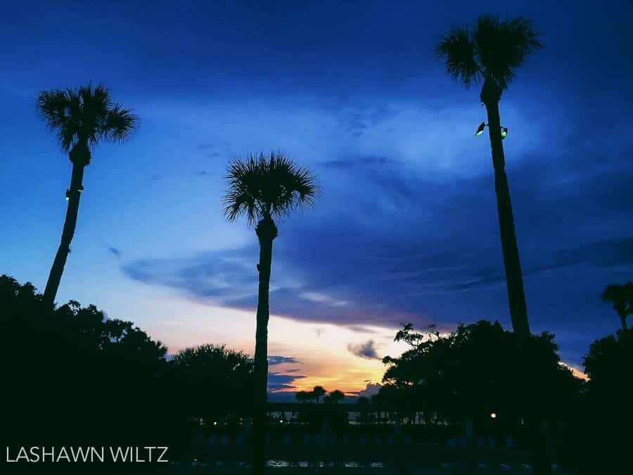 Saturdays an iPhoneography Project at Jekyll Island