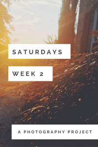 Saturdays a Photography Project 52 Saturdays a photo a day photography project every week