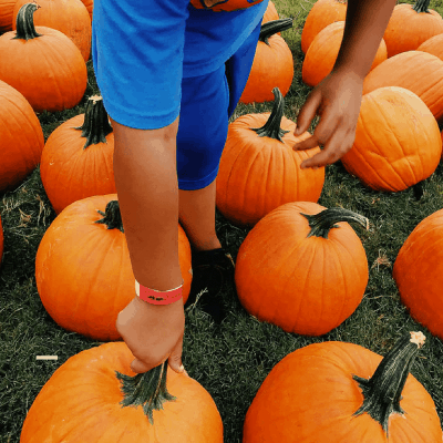 Saturdays Week 8: On Mom Guilt and Pumpkins