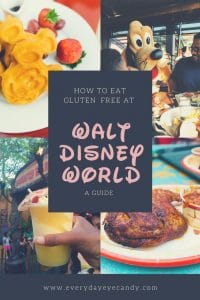 ultimate guide on how to eat gluten free at disney world