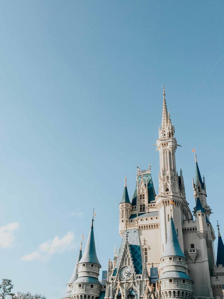 5 Must Know Disney Planning tips for First Timers