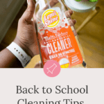 cleaning tips for busy moms