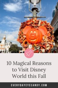 10 reasons to visit disney world this fall.