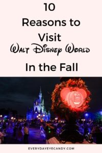 Fall is the best time to visit Disney! Check out these 10 Magical reasons to visit Walt Disney World this fall!