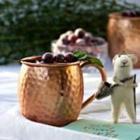 Spiced Cranberry Mule Recipe