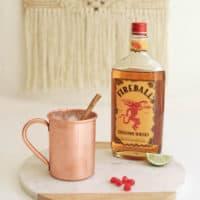 Cinnamon Whisky Mule Recipe
