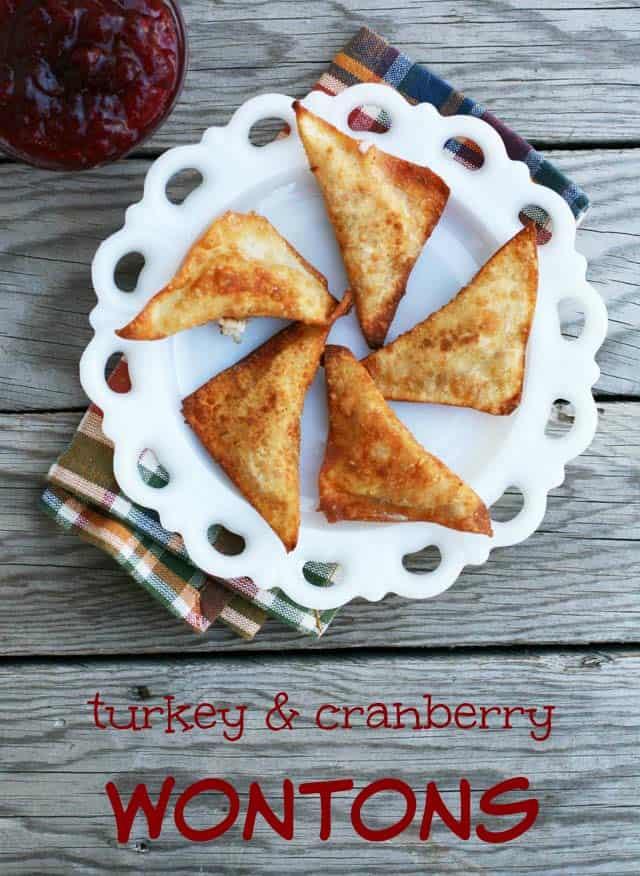 Thanksgiving Leftover Recipes: Turkey & Cranberry Wontons