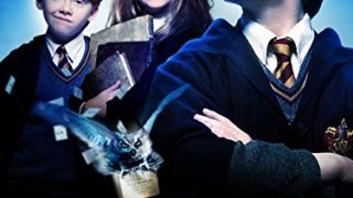 Harry Potter and the Sorcerer's Stone and the Entire Series (PG)
