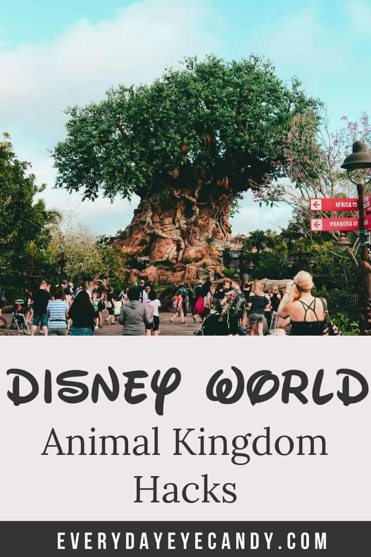 animal kingdom hacks graphic