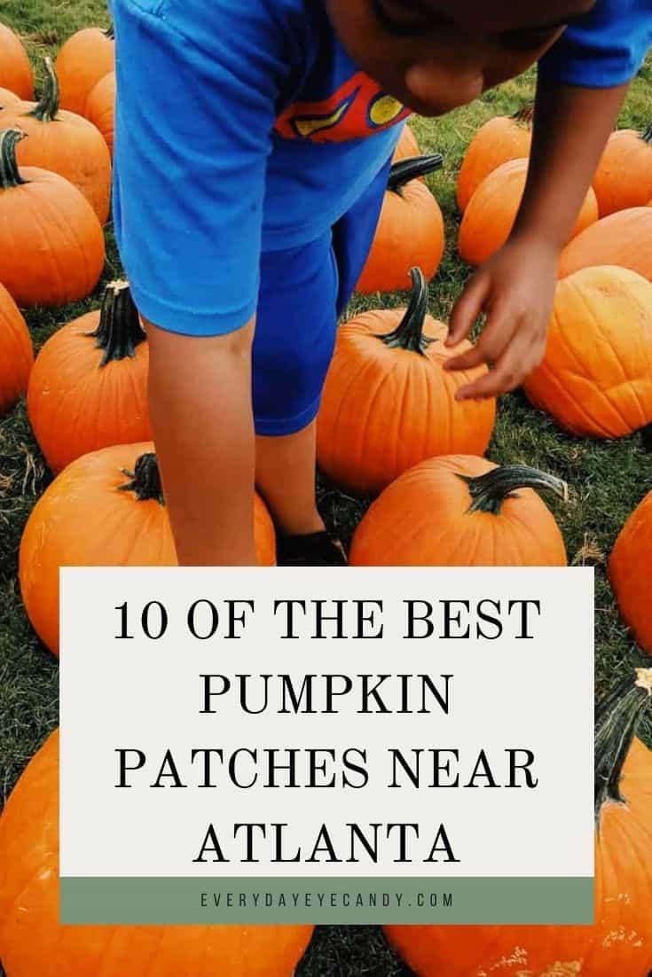 pumpkin patches near Atlanta