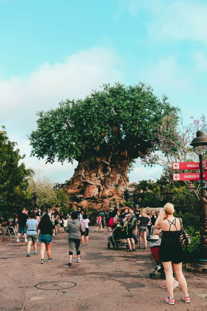 animal kingdom hacks at the tree of life.