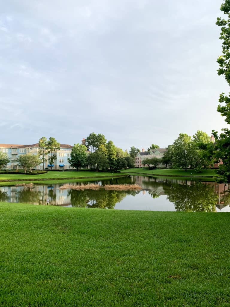 The view while walking at Saratoga springs