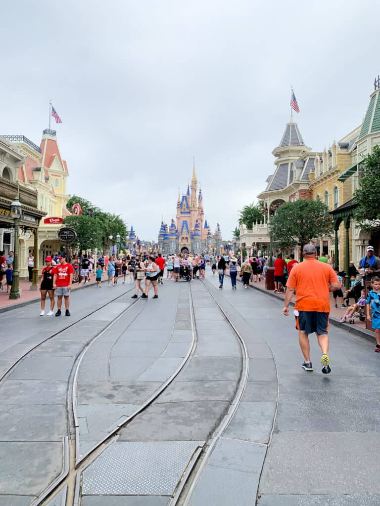 changes to disney world include a decrease in crowd capacity